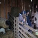 gewerbeverein-dermbach-weihnachtsmarkt-2014-10